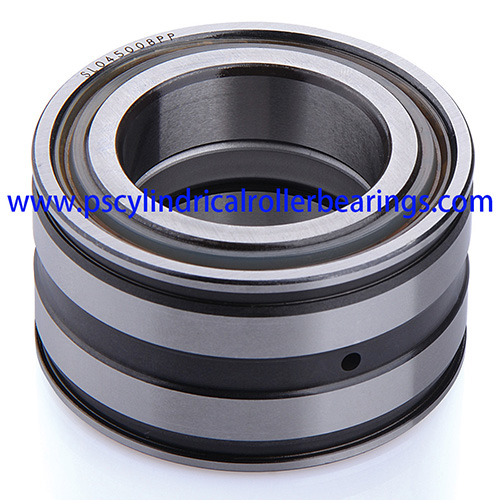 SL045011PP Sealed Cylindrical Roller Bearings