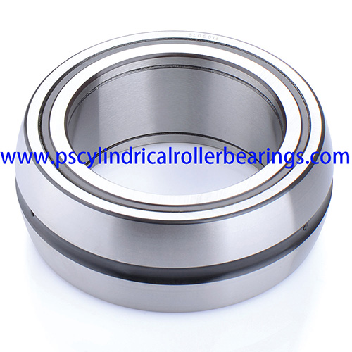 SL06028E Double Row Cylindrical Roller Bearing