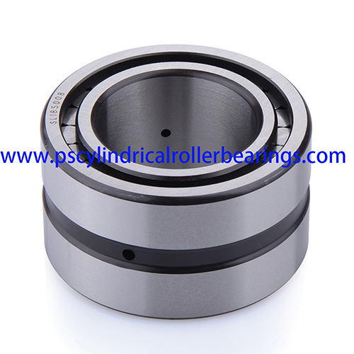 SL185010 Double Row Cylindrical Roller Bearing